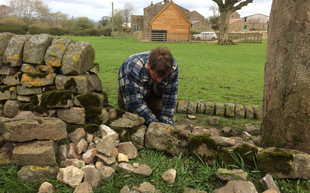 Hedgerows and Boundaries Grant Opens
