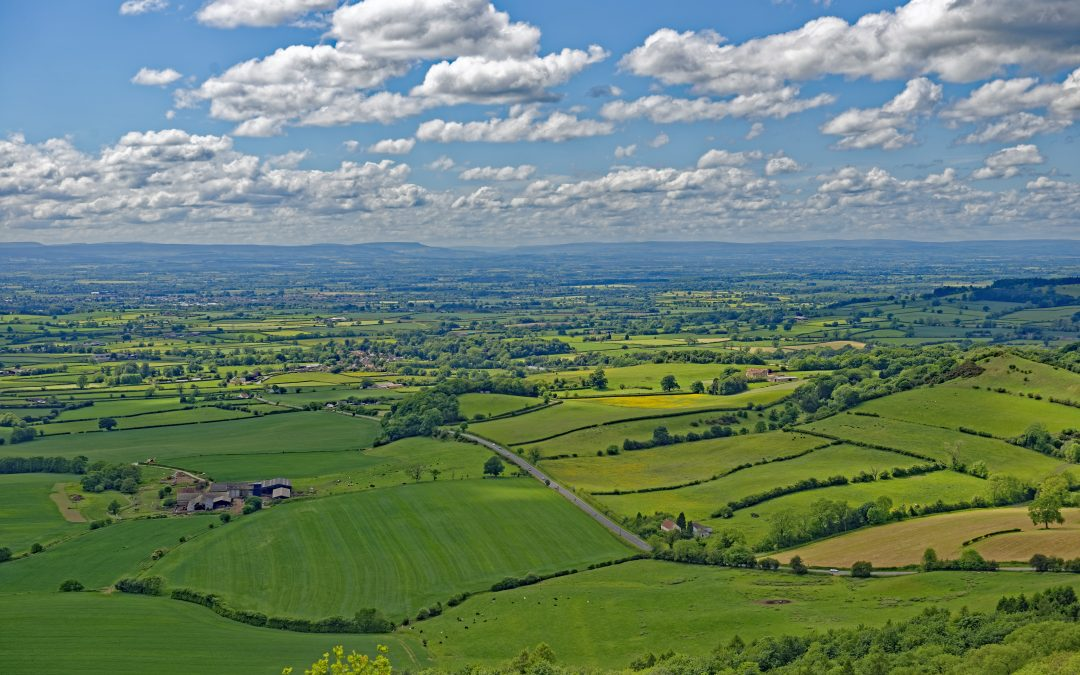 Agricultural Tenancy Reform – DEFRA Consultation