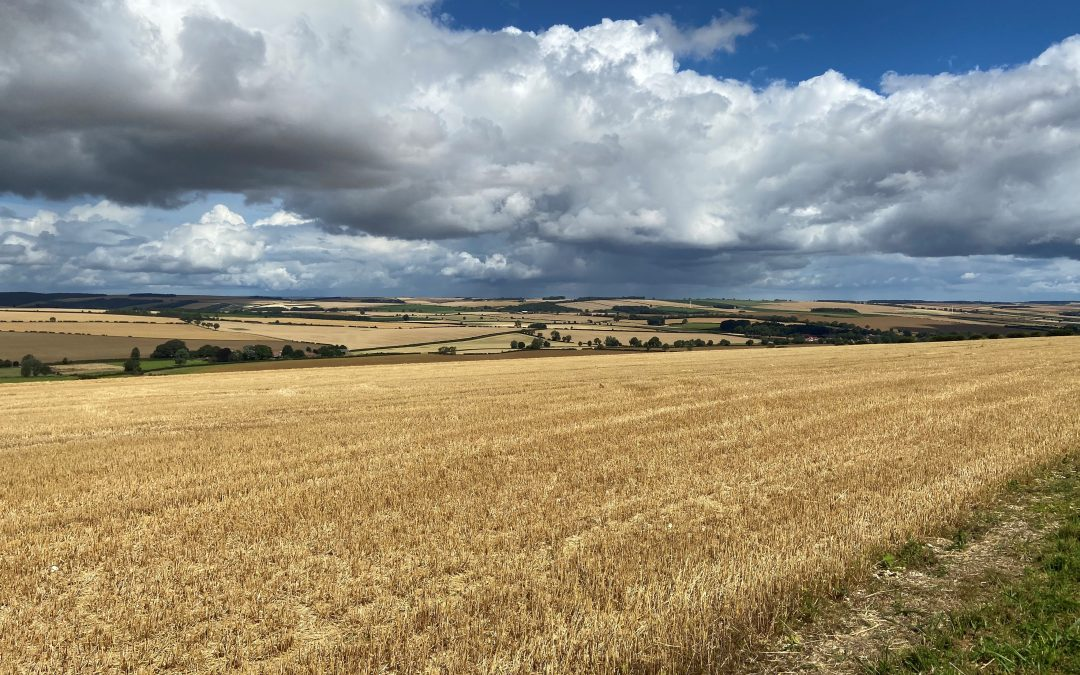 New Agriculture Bill for British Farmers