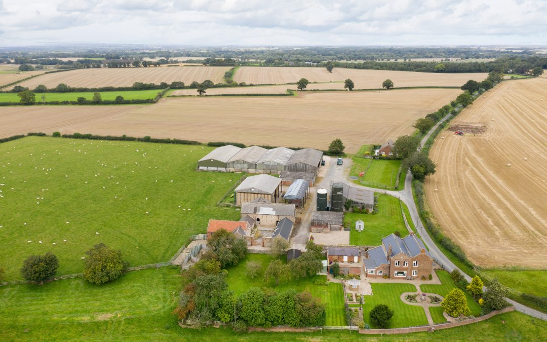 Buoyant First Six Months Of 2021 For Agricultural Sales